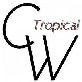 Casual Tropical Wear