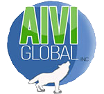 AIVI Global Inc, CCTV camera installation Washington DC