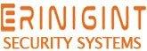 Erinigint Security Systems, commercial security alarm Sugar Land TX